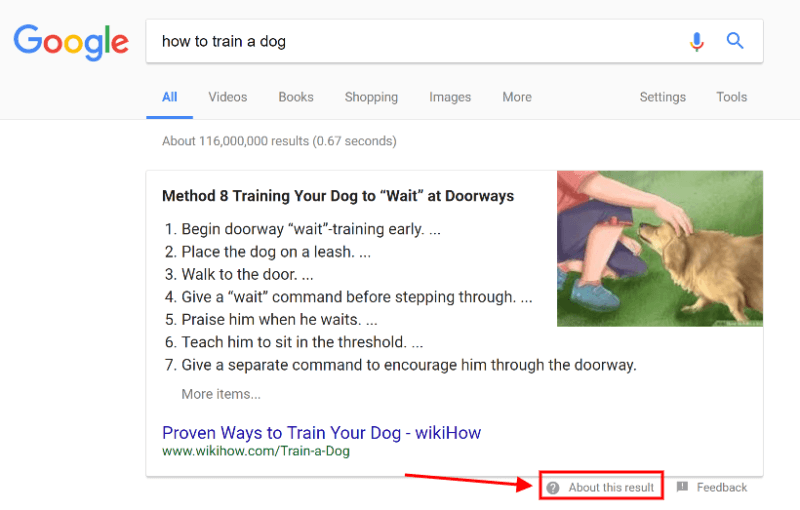 train-dog-featured-snippet-800x510.png